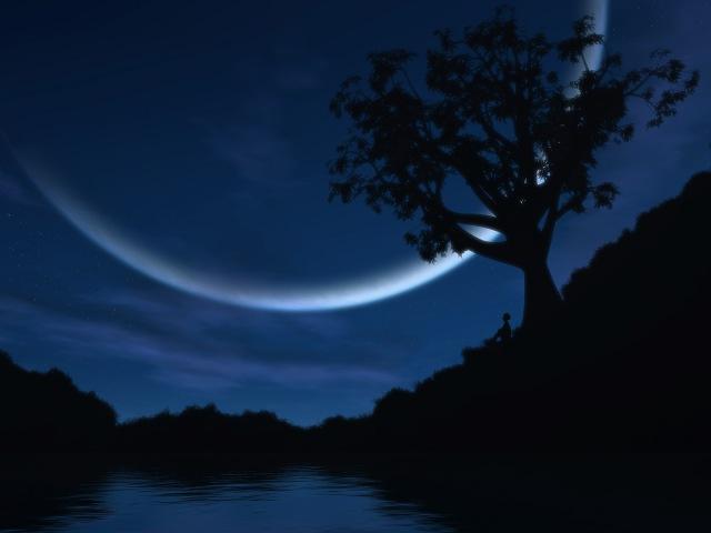 Late_Night_Reverie