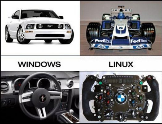 A Stereotypical view of Windows/Linux ?