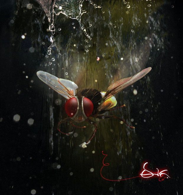 Eega-First-Look-Posters-and-Photos-11301